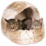 Лежаки, лежанки для кошек