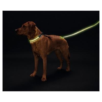 Hunter Ошейник для собак Manoa Glow LED желтый (фото, вид 3)