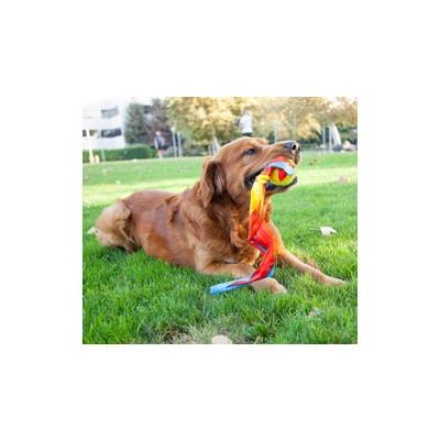 OH Игрушка для собак Comet Ball для бросков (фото, вид 1)