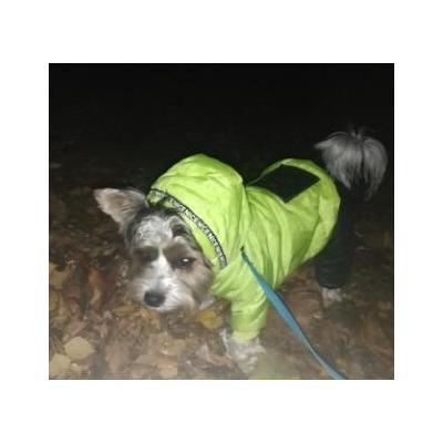 Антицарапки Теплый комбинезон для маленьких собак на меху Желтый, унисекс (фото, вид 3)