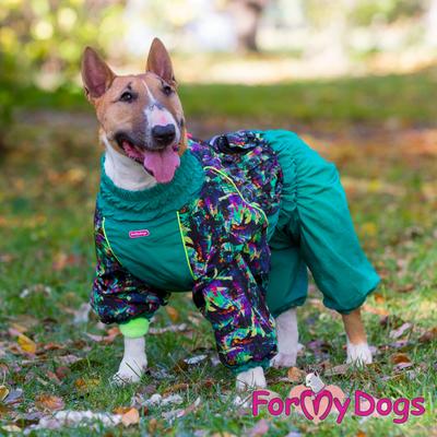 ForMyDogs Теплый комбинезон зеленый для девочек (фото, вид 2)