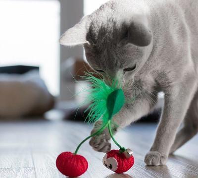 Petstages Игрушка для кошек Dental Вишни с кошачьей мятой (фото, вид 1)