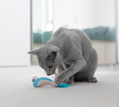 Petstages Игрушка для кошек Dental Креветки 2 шт. с кошачьей мятой (фото, вид 1)