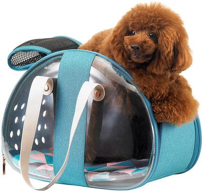Ibiyaya Складная сумка-переноска для собак и кошек до 6 кг прозрачная/бирюзовая (фото, вид 3)