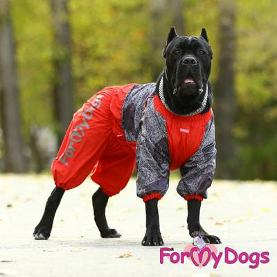 ForMyDogs Комбинезон для больших собак Красно/черный на меху, девочка (фото, вид 7)