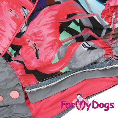 ForMyDogs Дождевик для таксы Фламинго для девочек (фото, вид 1)