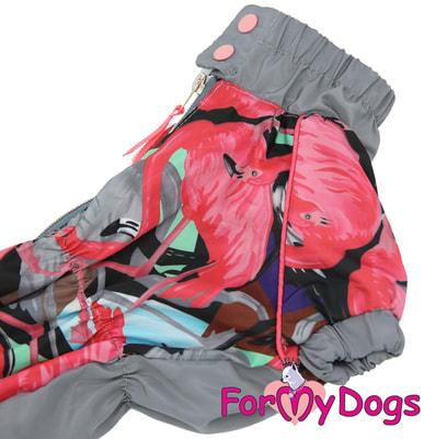 ForMyDogs Дождевик для таксы Фламинго для девочек (фото, вид 4)