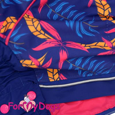 ForMyDogs Дождевик для крупных собак Листья синий девочка (фото, вид 3)