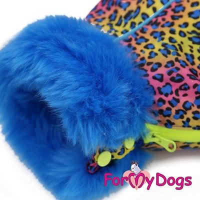 ForMyDogs Теплый комбинезон для такс Синий Леопард на меху для мальчика (фото, вид 1)