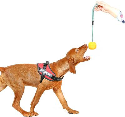 JULIUS-K9 Игрушка для собак Мяч с ручкой, флуоресцентный, силикон (фото, вид 1)