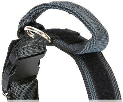 JULIUS-K9 Ошейник для собак Color & Gray, с закрытой ручкой, черно-серый (фото, вид 2)