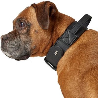 Hunter Ошейник для собак с ручкой Larvik, кожа, черный (фото, вид 3)