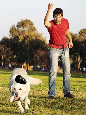 Kong Игрушка для собак под лакомства очень прочная - Extreme (фото, вид 4)