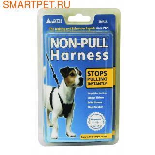 Halti COA Non-Pull Harness - Шлейка, препятствующая излишнему натяжению