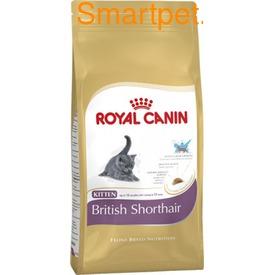 Royal Canin Корм для котят британской короткошерстной - Kitten British Shorthair