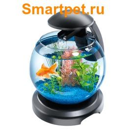 Tetra Cascade Globe аквариумный комплекс шар 6,8л