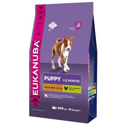 Eukanuba Сухой корм для щенков средних пород. Puppy Medium Breed (фото)