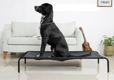 Lion Лежак-топчан для крупных пород собак черного цвета (фото)