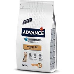 Advance Affinity Для йоркширского терьера Yorkshire Terrier