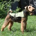 OSSO Fashion Попона охлаждающая для собак