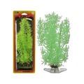 Penn-Plax Растение STONEWORT NITELLA светящийся
