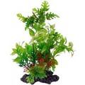 Fauna International Растение КОМПОЗИЦИЯ №35