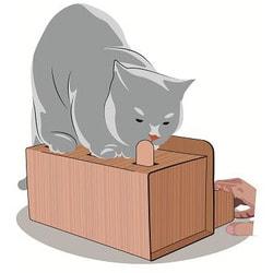 Антицарапки Интерактивная игрушка для кошек КЭТбоксинг