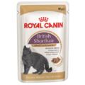 Royal Canin Adult British Shorthair пауч для британской короткошерстной кошки кусочки в соусе