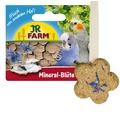 JR Farm Минеральный цветок
