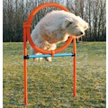 Trixie Набор для аджилити Tire Jump пластик