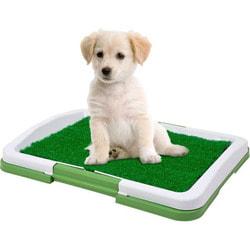 Smartpet Лоток с искусственной травкой для собак