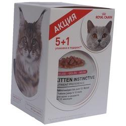 Royal Canin Набор паучей 5+1 Kitten Instinctive для котят в желе