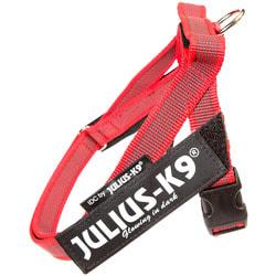 JULIUS-K9 Шлейка для собак Ремни Color & Gray IDC®, красный