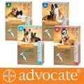 Bayer Адвокат капли для собак от чесоточных клещей, блох и гельминтов