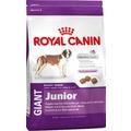 Royal Canin Корм для щенков гигантских пород от 8 до 18 месяцев - Giant Junior