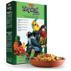 Padovan Tropical patte Корм для средних попугаев с фруктами