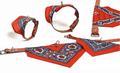 I.P.T.S./Beeztees Ошейник кожаный для собак с Платком красным
