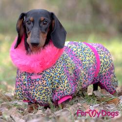 ForMyDogs Комбинезон теплый для такс Розовый Леопард, девочка