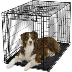 """MidWest Клетка Ovation Single Door Crate 42"""" с рельсовой дверью для щенков и больших собак"""