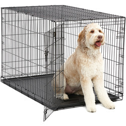 """MidWest Клетка iCrate Single door 48"""" однодверная для крупных собак, черная"""