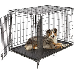 """MidWest Клетка для щенков и больших собак iCrate Double Door 42"""" двухдверная, черная"""