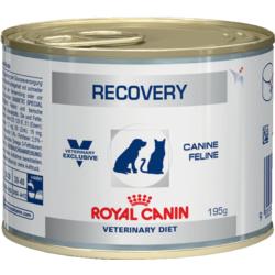 Royal Canin Консервы для собак и кошек в восст. период после болезни - Recovery
