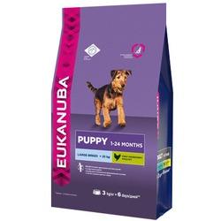 Eukanuba Корм для щенков крупных пород. Puppy&Junior Large Breed