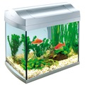Tetra AquaArt Shrimps Discover Line аквариумный комплекс