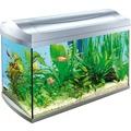 Tetra AquaArt аквариумный комплекс 60л