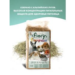 FIORY Fieno Pressato сено для грызунов пресованное